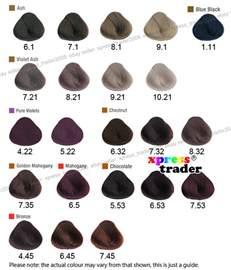 alfaparf color chart alfaparf evolution of the color permanent hair dye