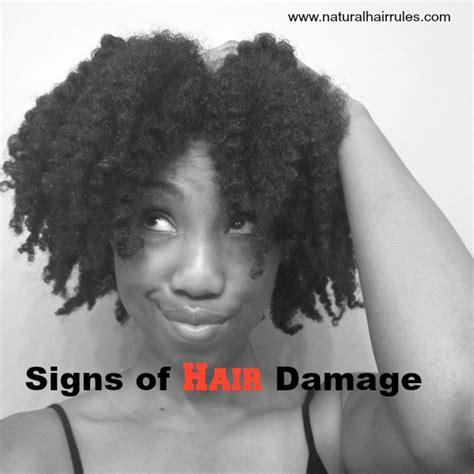 least damagin hair color 10 reasons why your relaxed 3 major types of hair damage and how to prevent them