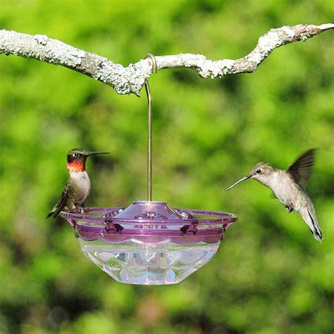 hummblossom hummingbird feeder 4 oz plum