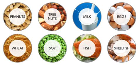 common food allergies about the most common food allergies