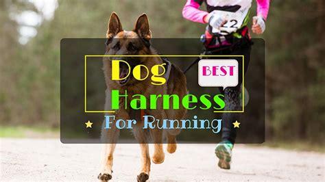 best harness for running best harness for running goaheadrunner