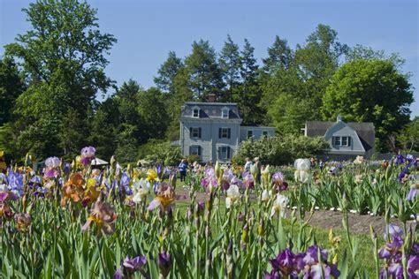 Presby Iris Garden by Iris Gardens Montclair Garden Ftempo