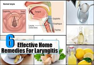 laryngitis home remedies laryngitis home remedies treatments and cure