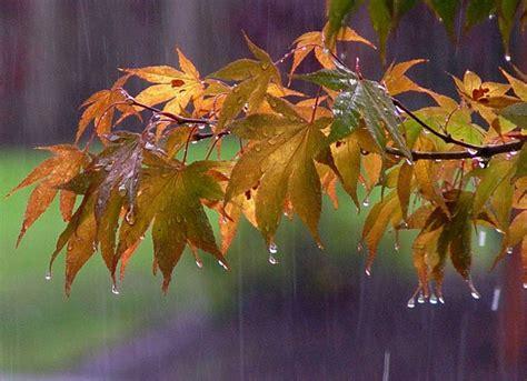 mm di pioggia maltempo umbria in due giorni 133 2 mm di pioggia