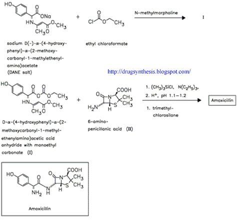amoxicillin vs human amoxicillin amoxil beecham dosage synthroid 100 vs 112
