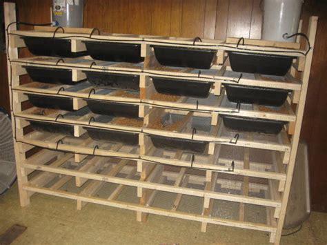 rat rack pythons net gallery