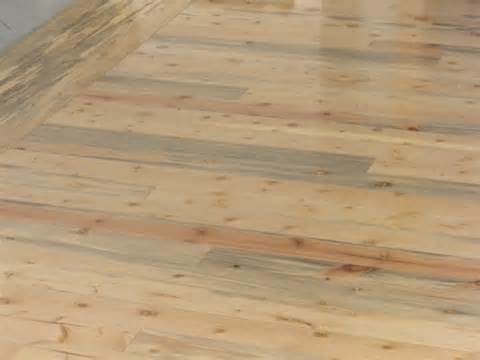 Tongue And Groove Shiplap by Shiplap Wood Lookup Beforebuying