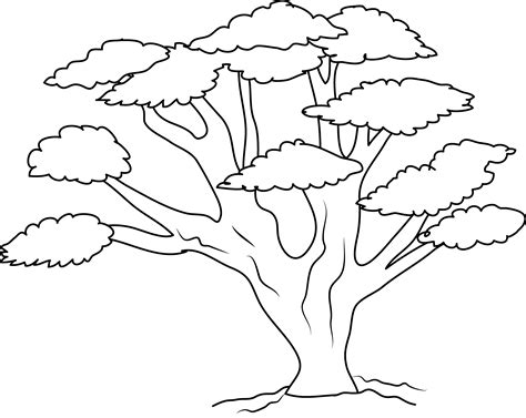 Oak Tree Coloring Page Free Clip Art Tree Coloring Page Outline
