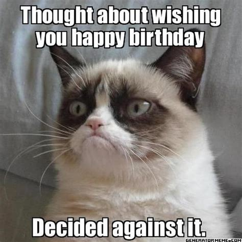 Grumpy Cat Meme Happy Birthday - 9 best grumpy cat memes 8