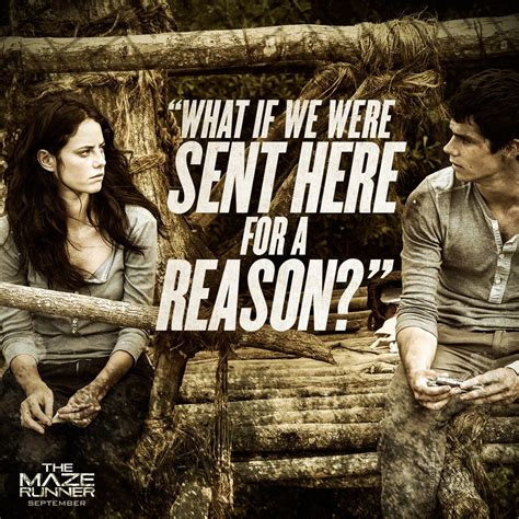 film maze runner thomas maze runner movie quotes quotesgram