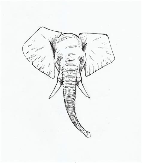 elephant tattoo stencils 43 cute outline elephant tattoos