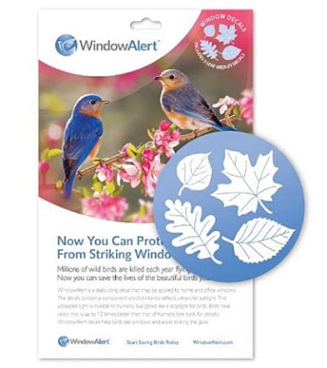 wild birds unlimited prevent birds from flying into windows