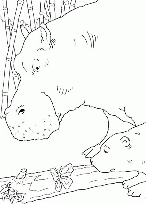coloring pages the little polar bear coloring page the little polar bear coloring pages 9