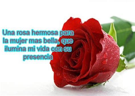 imagenes rosas versos los mejores versos de amor para whatsapp en imagenes de flores