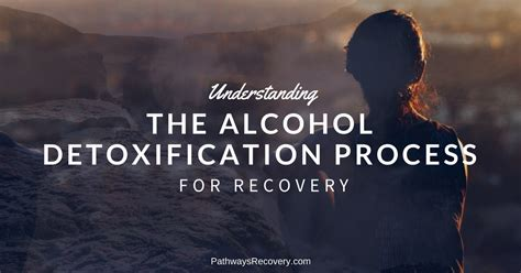 Best Detox For A Recovering Alcoholic by Detoxification Drugs Addiction Treatment And