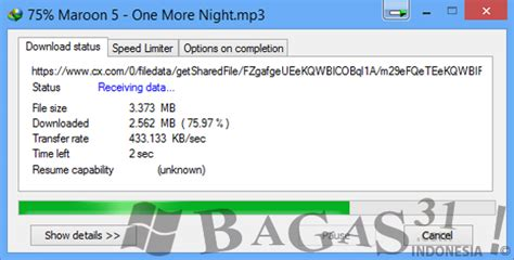 idm full version free download bagas31 internet download manager 6 14 build 5 full patch