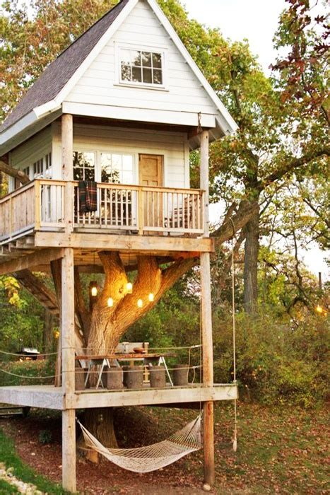 tree house perch feels like home ii
