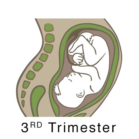 mood swings in third trimester moss acupuncture san francisco