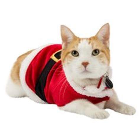 jacket petsmart whisker city 174 glitter cat tie clothes costumes petsmart aaaaaand fluff in a