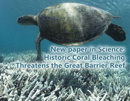 Coral Reef Research Paper by Noaa Nesdis Center For Satellite Applications And Research