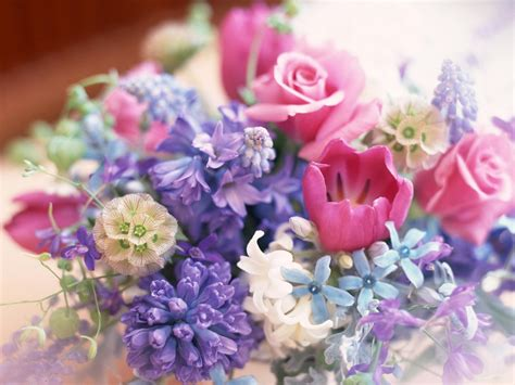 flowers decoration hd wallpapers high definition 100 quality hd desktop