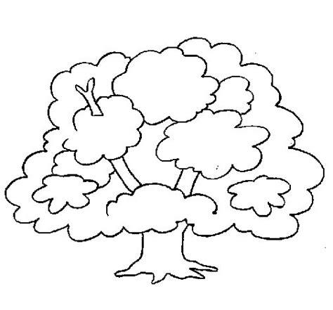 imagenes para dibujar un arbol dibujo de 193 rbol para colorear dibujos net