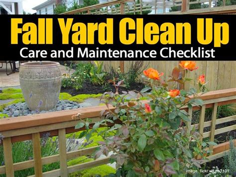 fall garden care 25 best ideas about yard maintenance on