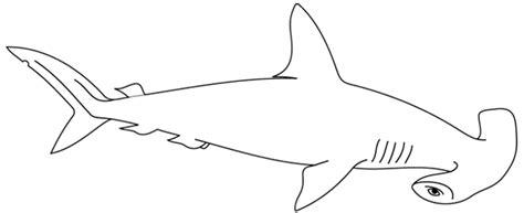 Coloriage Requin Les Beaux Dessins De Animaux 224 Imprimer Dessin De Requin Blanc Colorier L