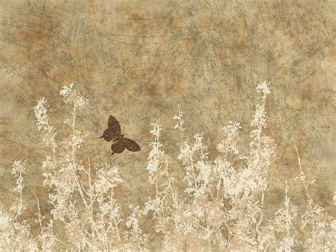 butterfly old vintage free ppt backgrounds for your free stock photos rgbstock free stock images nature