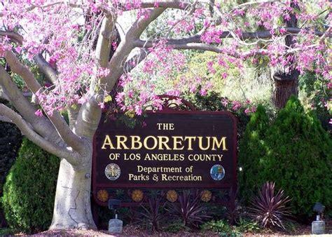 botanical garden in pasadena los angeles county arboretum arcadia photo album 187 topix