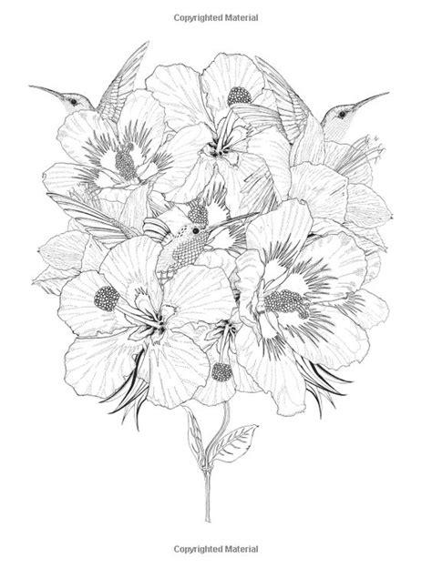 birdtopia colouring book colouring 1780677790 the world s catalog of ideas