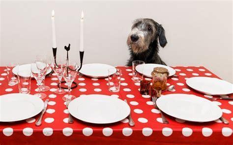 galateo a tavola 10 regole bon ton a tavola cucina d la repubblica