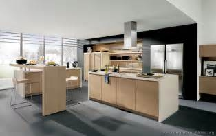 Modern Wooden Kitchen Cabinets Modern Light Wood Kitchen Cabinets Pictures Design Ideas