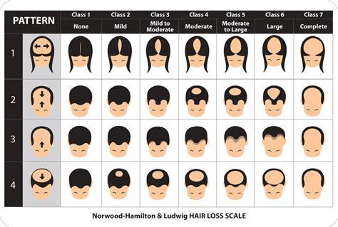 Montclair Hair Serum montclair hair serum serum montclair