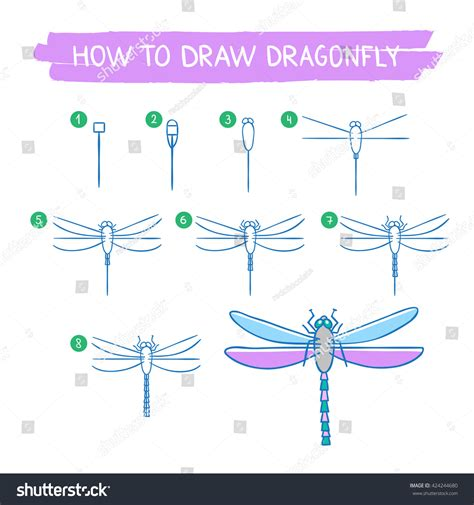 vector hand tutorial dragonfly drawing tutorial how draw dragonfly stock vector