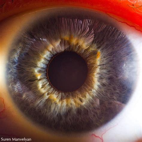 Extreme Close Ups Of Human Eyes Enpundit Eyeball Pics