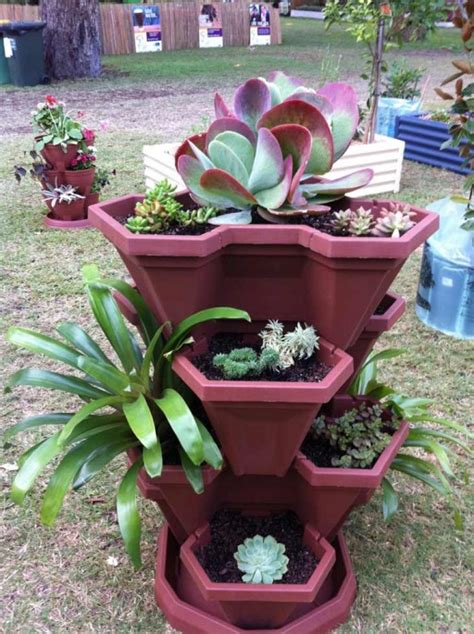how to grow pretty flowers in vertical gardening pots with