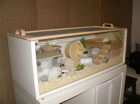 diy hamster cage diy hamster cage search kid stuff