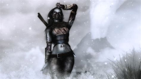 skyrim assault armor west wind combat series assault armor сет налетчицы