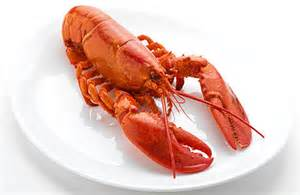 how to boil lobster simple recipes