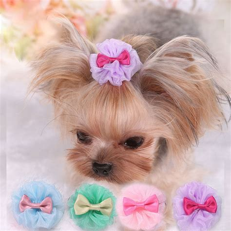 Hair Accessories For Yorkie Poos | hair accessories for yorkie poos yorkie bows dog hair