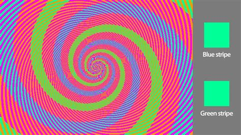 color optical illusions the best optical illusions so far