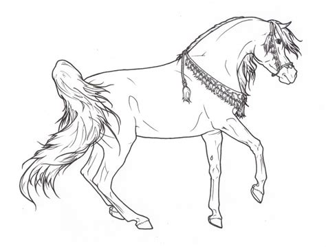 Realistic Arabian Coloring Pages Coloring Pages Arabian Coloring Pages