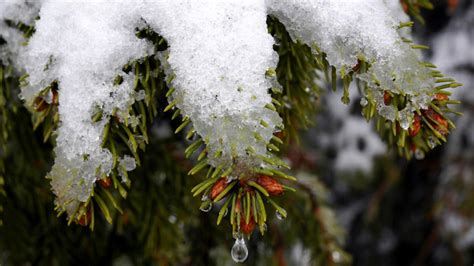 schnee wann wann schmilzt schnee wann taut schnee wetter de