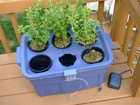 How To Grow Awesome Vegetables Complete Hydroponic System Hydroponic Vegetable Garden