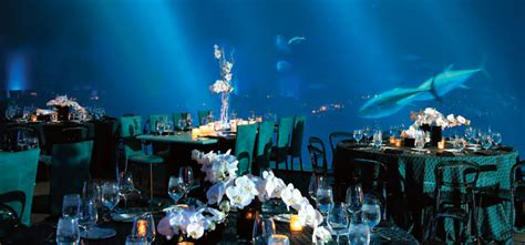 Host an Event at the Monterey Bay Aquarium