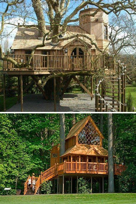 livable tree house plans astonishing livable tree house plans images ideas house design younglove us