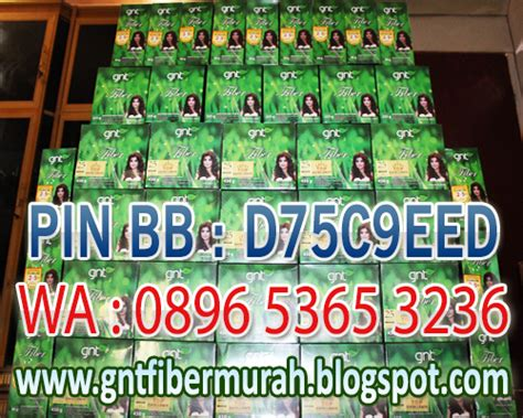 Gnt Fiber Solusi Pelangsing Alami Murah gnt fiber pelangsing murah gnt fiber murah