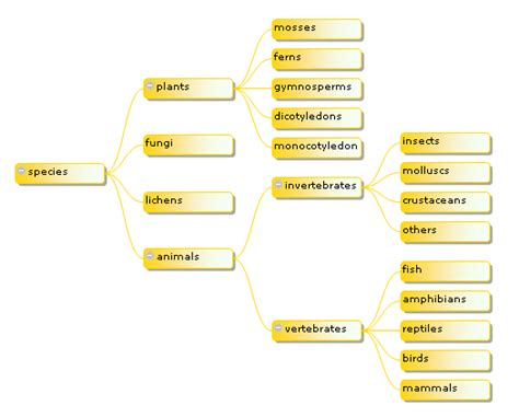 javascript layout algorithm graphic javascript tree with layout codeproject