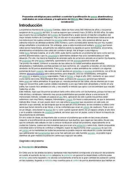 ensayo sobre la proliferacion de las mascotas reiki